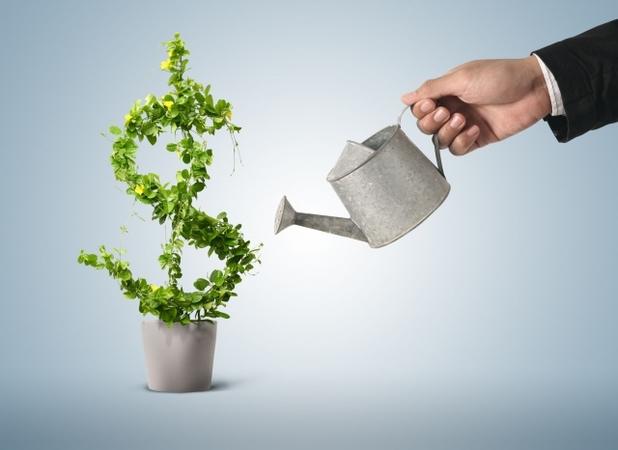 Investing in Ukraine is profitable